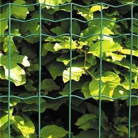 Havehegn grøn 80 cm x 10 Meter